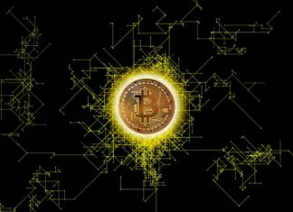 Bitcoin in Government